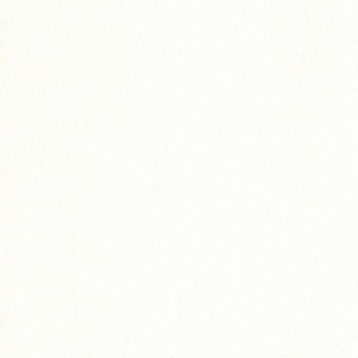 75221 Обои Limonta (Ornamenta) (1*6) 10,05x0,53 винил на бумаге