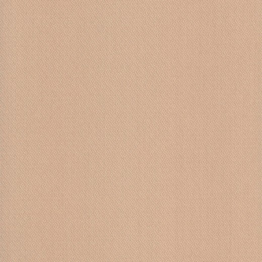 75202 Обои Limonta (Ornamenta) (1*6) 10,05x0,53 винил на бумаге